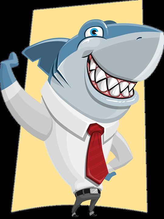shark-1417151_960_720